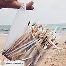 Plastic Straws.jpg