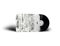 Vinyl sleeve design for Louie Louie