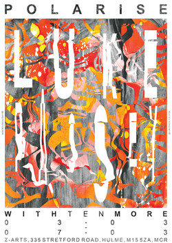 Polarise poster artwork/design