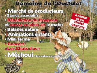 fête de la transhumance à l'Oustalet, st Pierre la mer samedi 16 mai 15
