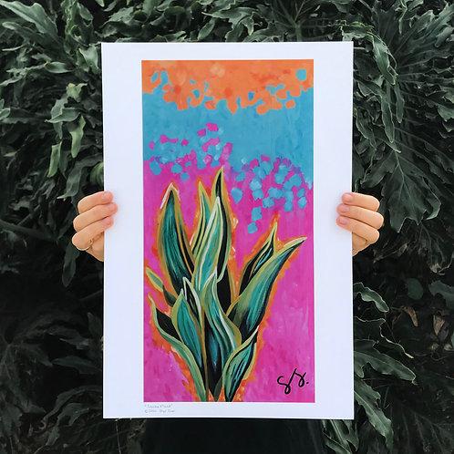Snake Plant (Print)