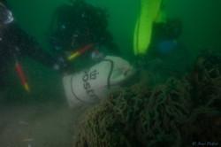 samen maken we de Noordzee schoon
