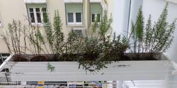 atelierbase-casa_duplicada(7)
