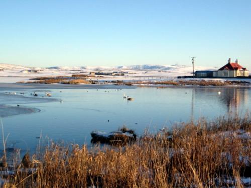 Winter - Harray Loch
