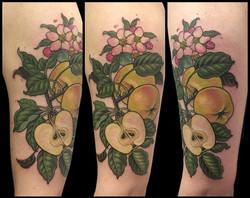 laura's apples