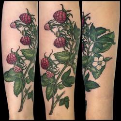 helena's raspberries