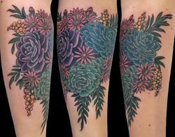 sylvia's succulents