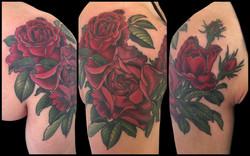 katherine's roses