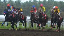 Tips Balap Kuda Dapat Membantu Anda Mendapatkan Kemenangan