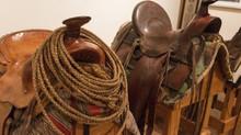 Beberapa Tips Sebelum Membeli Peralatan Untuk Kuda Anda