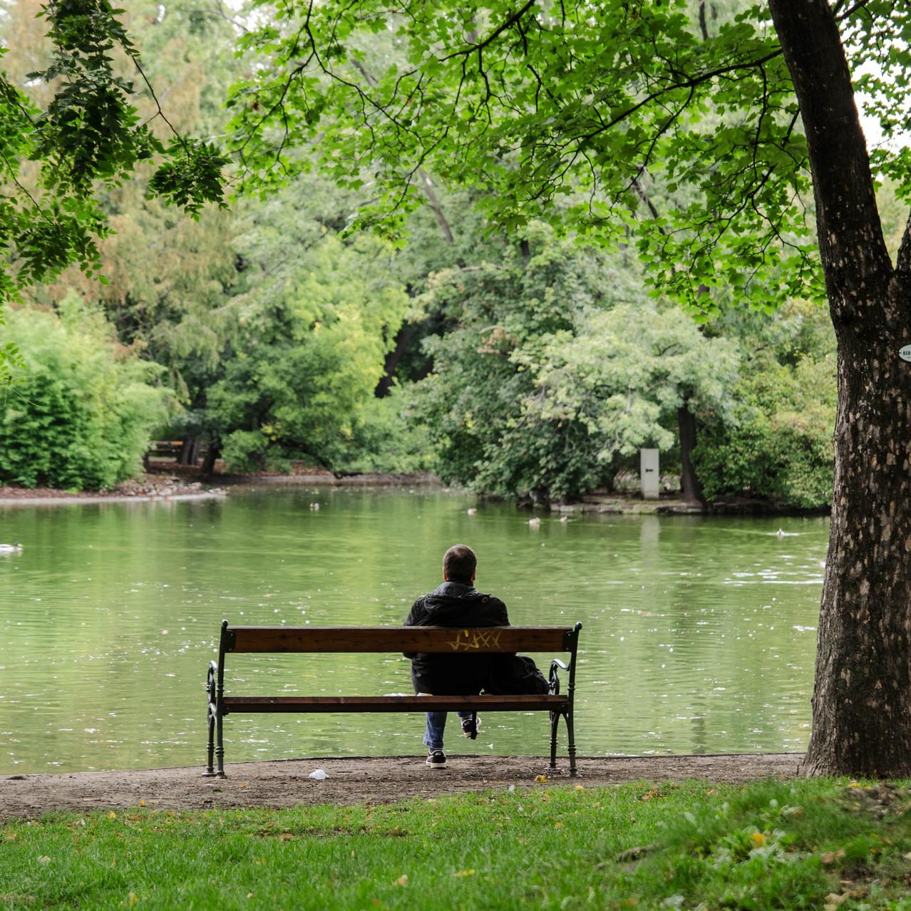 A park in Vienna