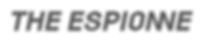 ESP_Schriftzug_SW_DEF_LF-02.png