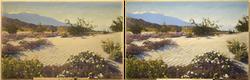 Stephen Willard Painting Restoration