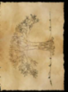 Entry 5b - Gloomtree sketch.png