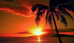 Sunset Baby Beach