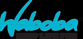 waboba-logo.png