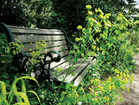 Garden Nooks That Spark Joy: Tiny Retreats and Outdoor Follies