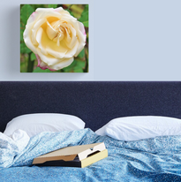 Yellow Rose Canvas.png