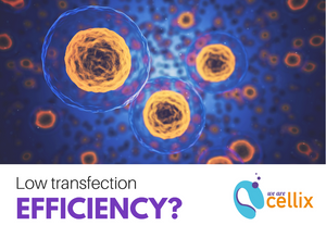 We Are Cellix Low transfection efficiency