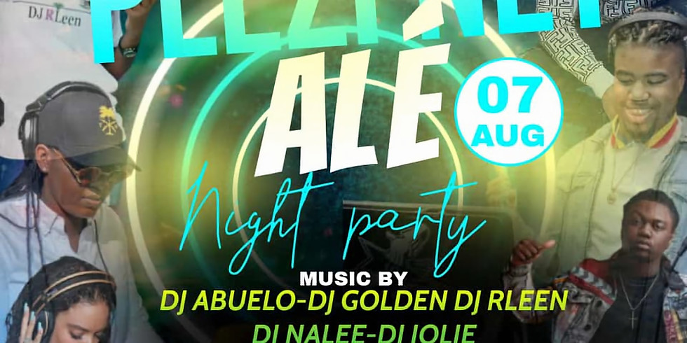 Plezi Net Ale - Night Party