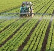 Cancer & Pesticides