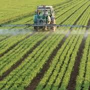 Pesticides and Cancer
