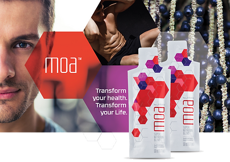 MOA, transform your health, transform your life