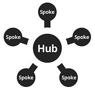 Hub and spokes business model for ARIIX