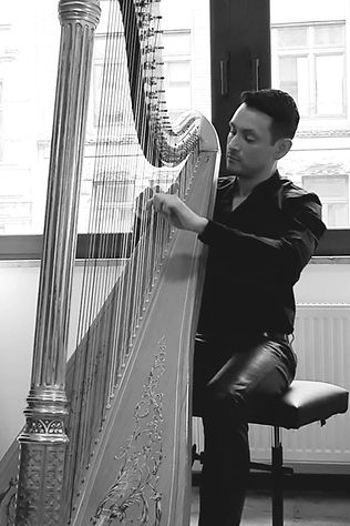 Ivan Gomez Cervantes, Harfe,Harfenunterricht, Musikschule Cluster