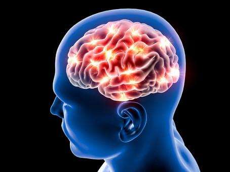 How Vitamin D Protects Brain Function