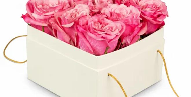 Rosenbox Rosa 15cm