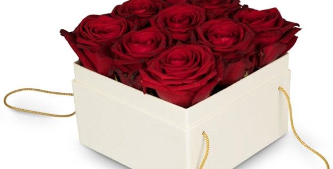 Rosenbox Rot 15cm