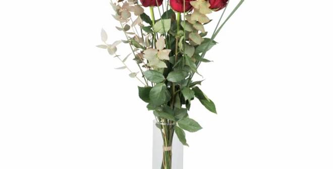 3 rote Rosen mit Grün