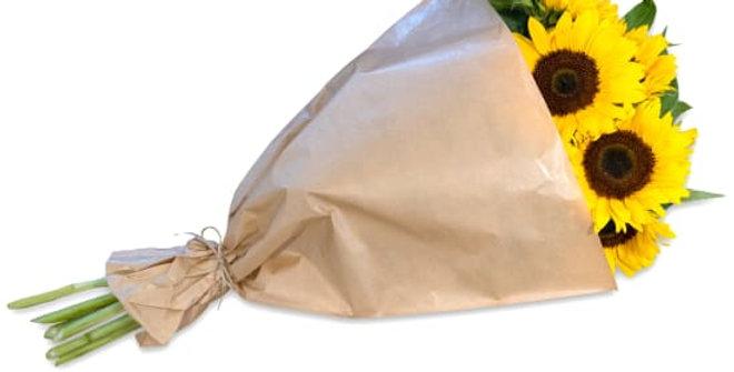 Sonnenblumenbund