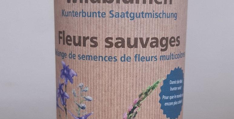 Wildblumensamen Kunterbunte Saatgutmischung
