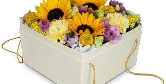 Box mit Sonnenblumen