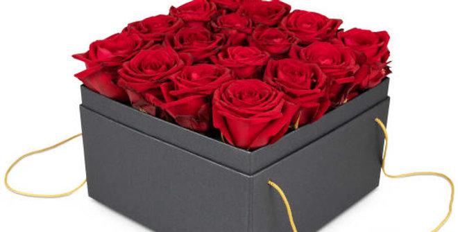 Rosenbox Rot 20cm