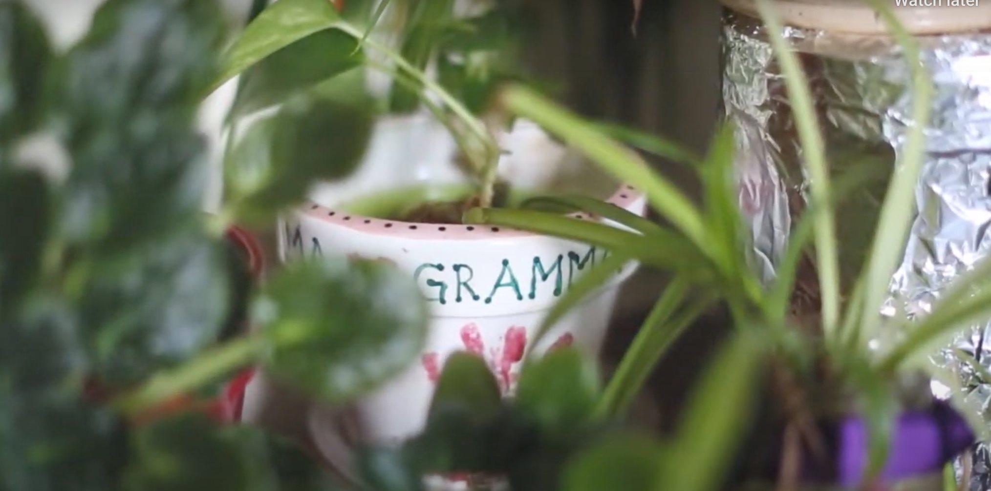 """""""My Wise Gramma"""" by Amelia Hamilton"""