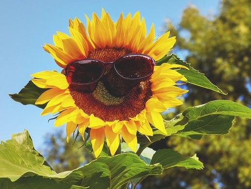 O que significa as siglas UVA – UVB – PPD no Protetor Solar.