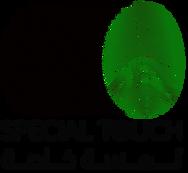 شعار لمسة خاصة