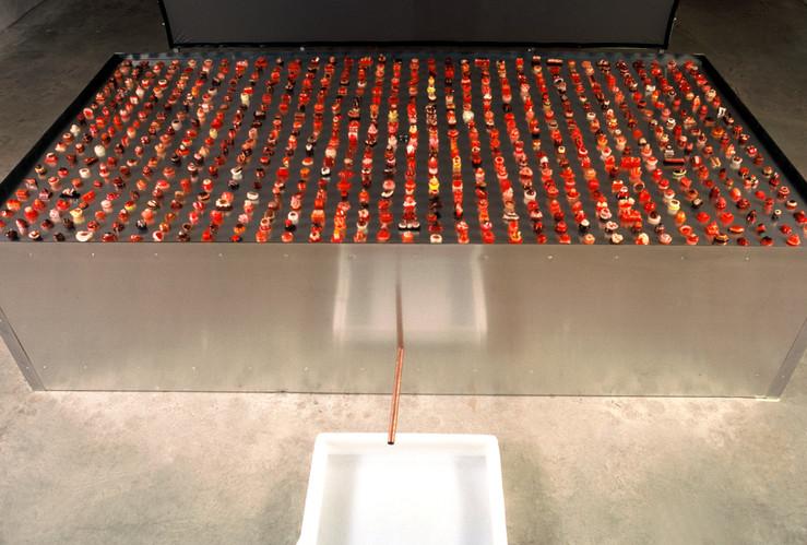 Corpa Delicata installation (detail)