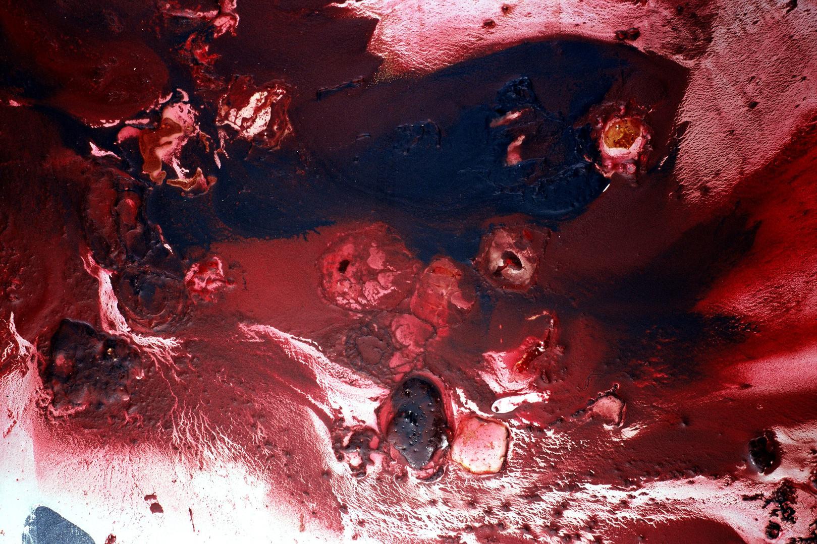 Corpa Delicata aftermath (detail)