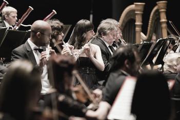 音樂小百科:奏鳴曲(Sonata)到底是什麼?
