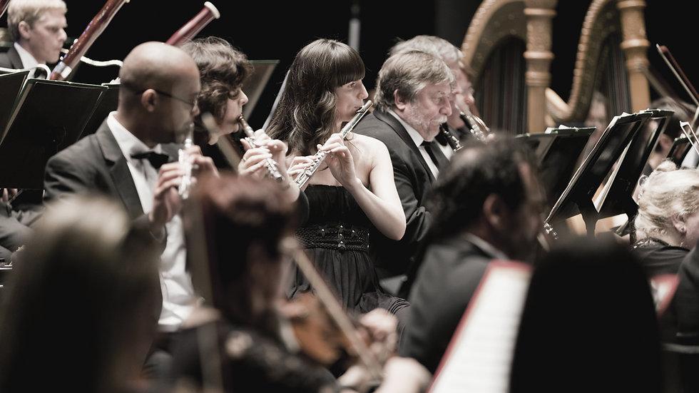 Digitale Konzerthalle der Berliner Philharmoniker