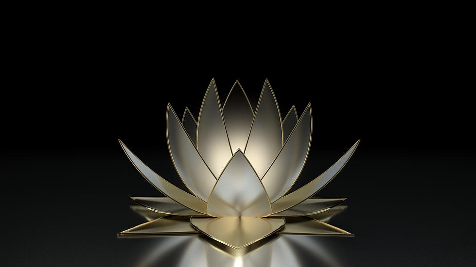 Lotus bloem5.png