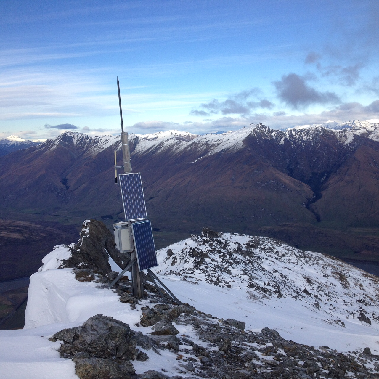 Repeater near Wanaka