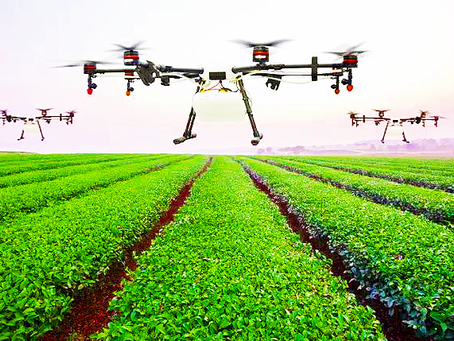 Future of Farm: Powerful Roles of Drones in Agriculture