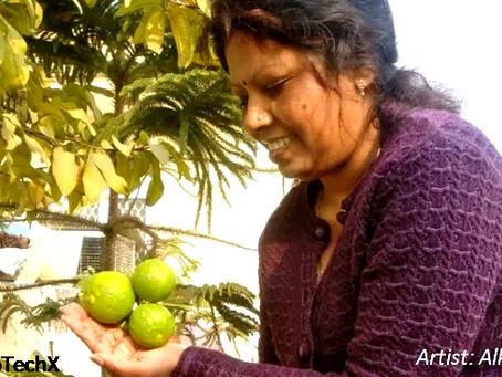 Adopting Organic Lifestyle through Urban Gardening