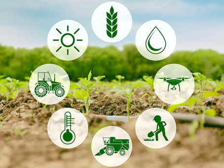 Top 5 Sensors Used in Agriculture