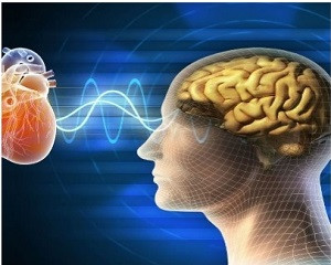 """A Link Between the Scientific """"Brainwave Studies"""" and Conversations with God Book 3"""